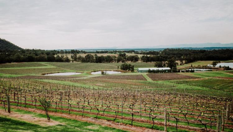 Affordable wedding venues in the Hunter Valley